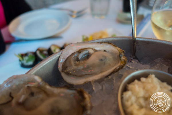 East coast oysters at Blue Water Grill in NYC, New York