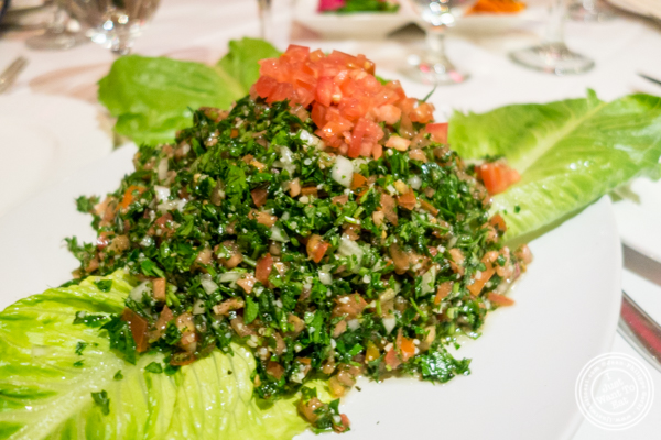 Tabboule at Byblos, Lebanese restaurant in NYC, New York