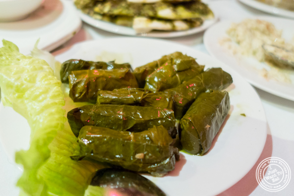 Grape leaves at Byblos, Lebanese restaurant in NYC, New York