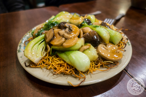 Three mushrooms pan fried noodles at Vegetarian Dim Sum House in ChinaTown, NYC, New York