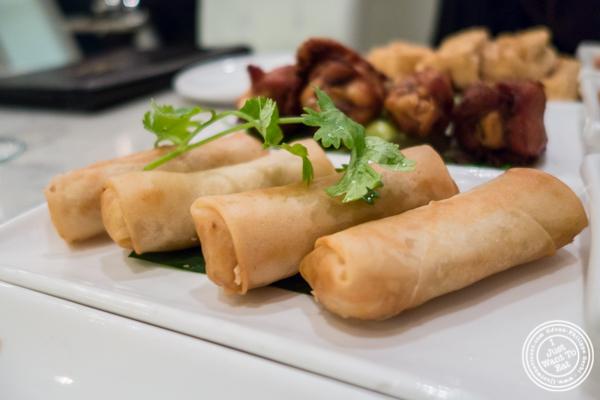 Vegetable Spring rolls at Bangkok Cuisine Upper East Side, NYC