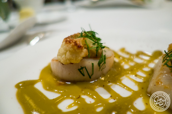 Diver scallops at Jean-Georges in NYC, New York