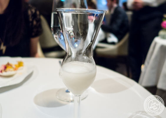 Macadamia nuts milk at Jean-Georges in NYC, New York