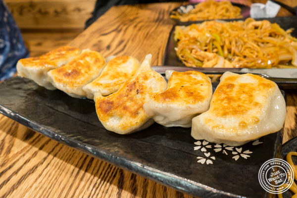 Fried pork dumplings at KungFu Kitchen in Times Square, NYC