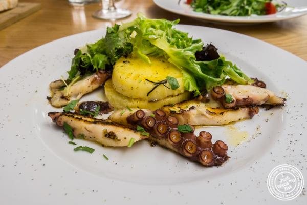 Grilled Portuguese octopus at Al Vicoletto near Union Square, NYC