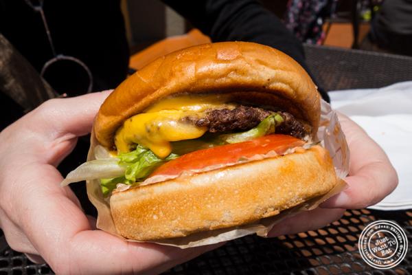 Cheeseburger at In-N-Out Burger in San Francisco, CA