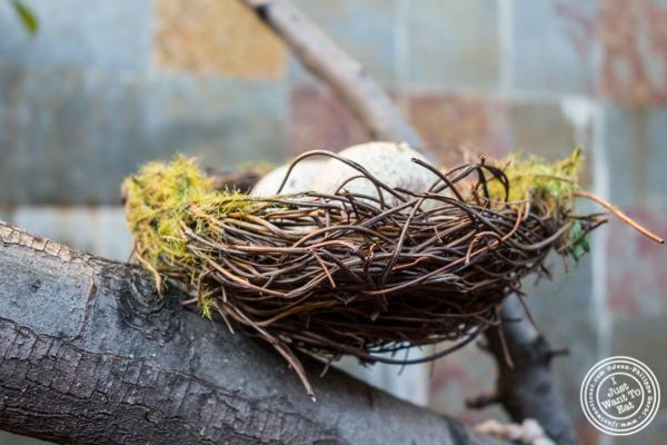 Nest at Kurry Qulture in Astoria, Queens