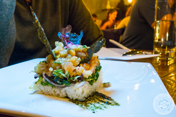 Hiramasa king fish tartare at Hanjan in NYC, New York