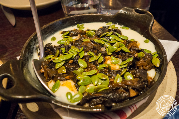 Melted cheese with black trumpets mushrooms at Empellon Taqueria in NYC, NY