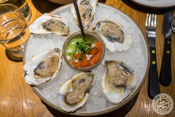 Oysters with sangria at Cosme in NYC, NY
