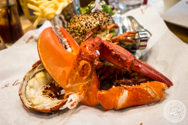 Lobster at Burger and Lobster in NYC, NY