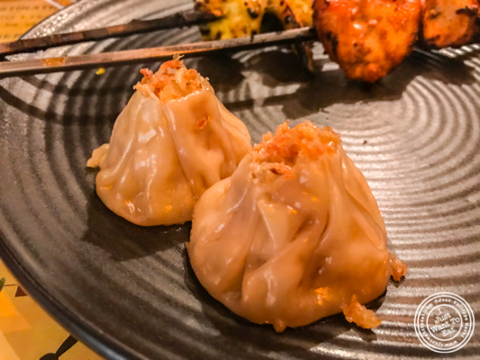Chicken momo at Pirates of Grill at The Mall of India, Noida