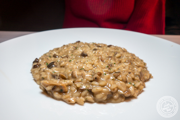 Risotto funghi at Marea in NYC, NY