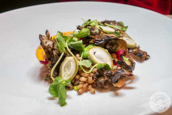 Faro salad at Marea in NYC, NY