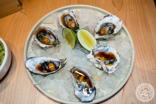 Oysters at Empellon Midtown in NYC, NY