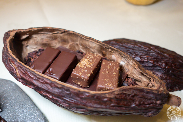 Chocolates at Gabriel Kreuther in NYC, NY