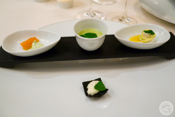 Tasting of cucumber at Daniel in NYC, NY