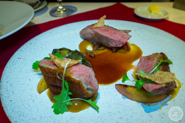 Duck at Café Boulud in NYC, NY