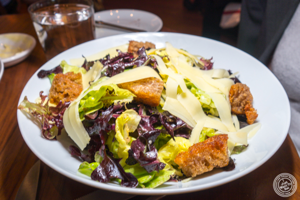 Bibb & Red Oak Leaf Lettuces salad at Union Square Cafe in NYC, NY