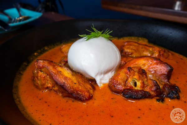 Burrata butter chicken at Soul Curry in Hoboken, NJ