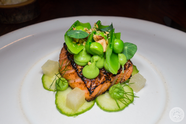 Salmon at The Musket Room in NYC