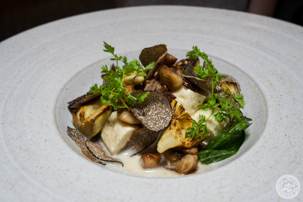 Smoked ricotta dumplings at The Musket Room in NYC
