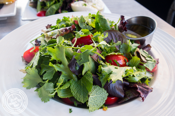 Green salad at Dolce & Salato in Hoboken, NJ
