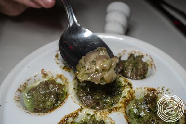 Escargots at Delice & Sarrasin in the West Village