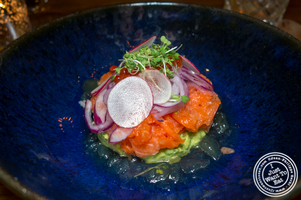 King Salmon tartare at Mifune in NYC, NY