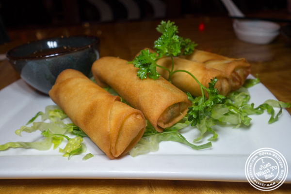 Vegetarian Spring rolls at Bugis Street Brasserie and Bar in Times Square