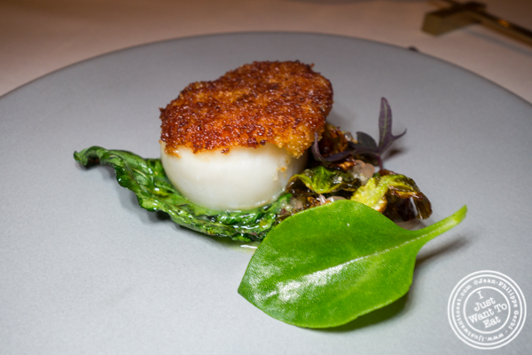 Scallop at Jungsik in TriBeCa