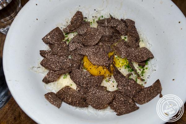 Truffle bibim myun at Jeju Noodle Bar in Greenwich Village