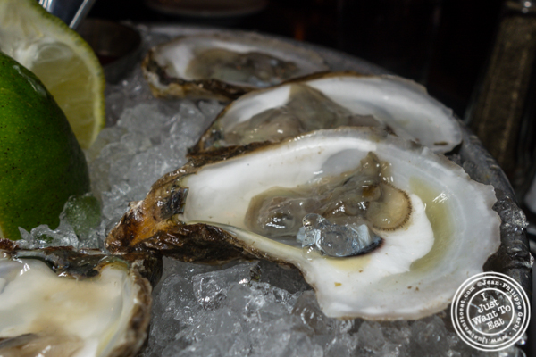 Malpeque oyster at Thalia in NYC, NY