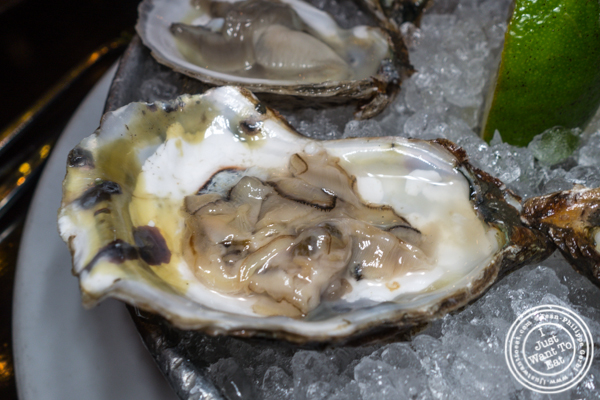 Blue Point oyster at Thalia in NYC, NY