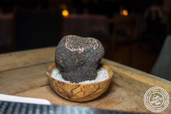Truffle from Carpentras, France at L'Appart in NYC