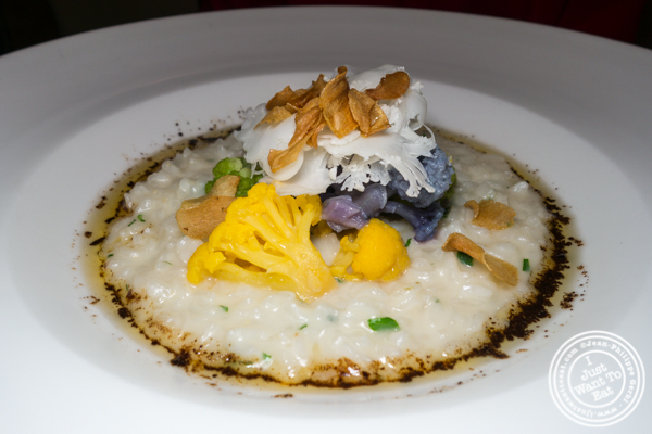 Cauliflower risotto at Bar Boulud in NYC, NY