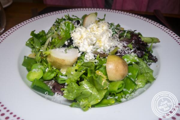 Spring salad at Bar Boulud in NYC, NY