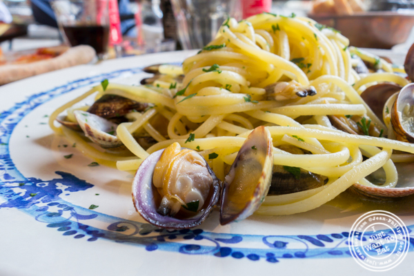 Linguine alle vongole at Borgo Antico in Florence, Italy