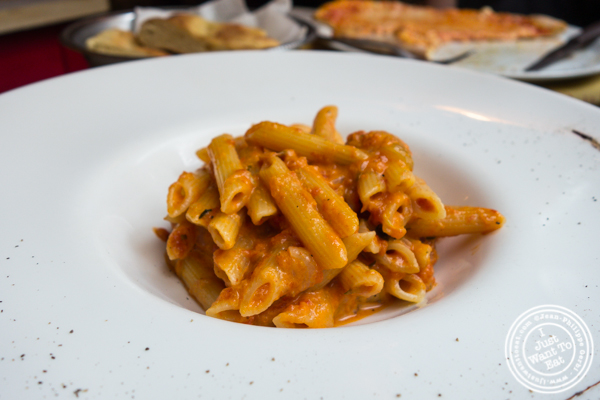Penne alla vodka at Osteria Del Gatto e la Volpe in Florence, Italy