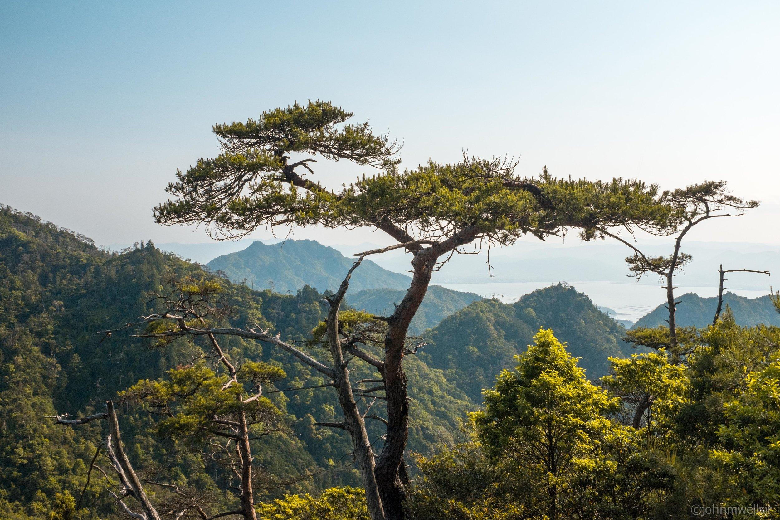 Japan 5_145-2.jpg