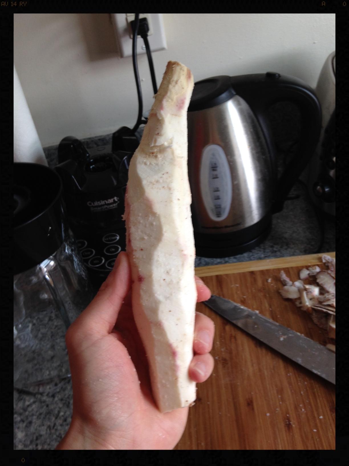 peeling yucca again.JPG