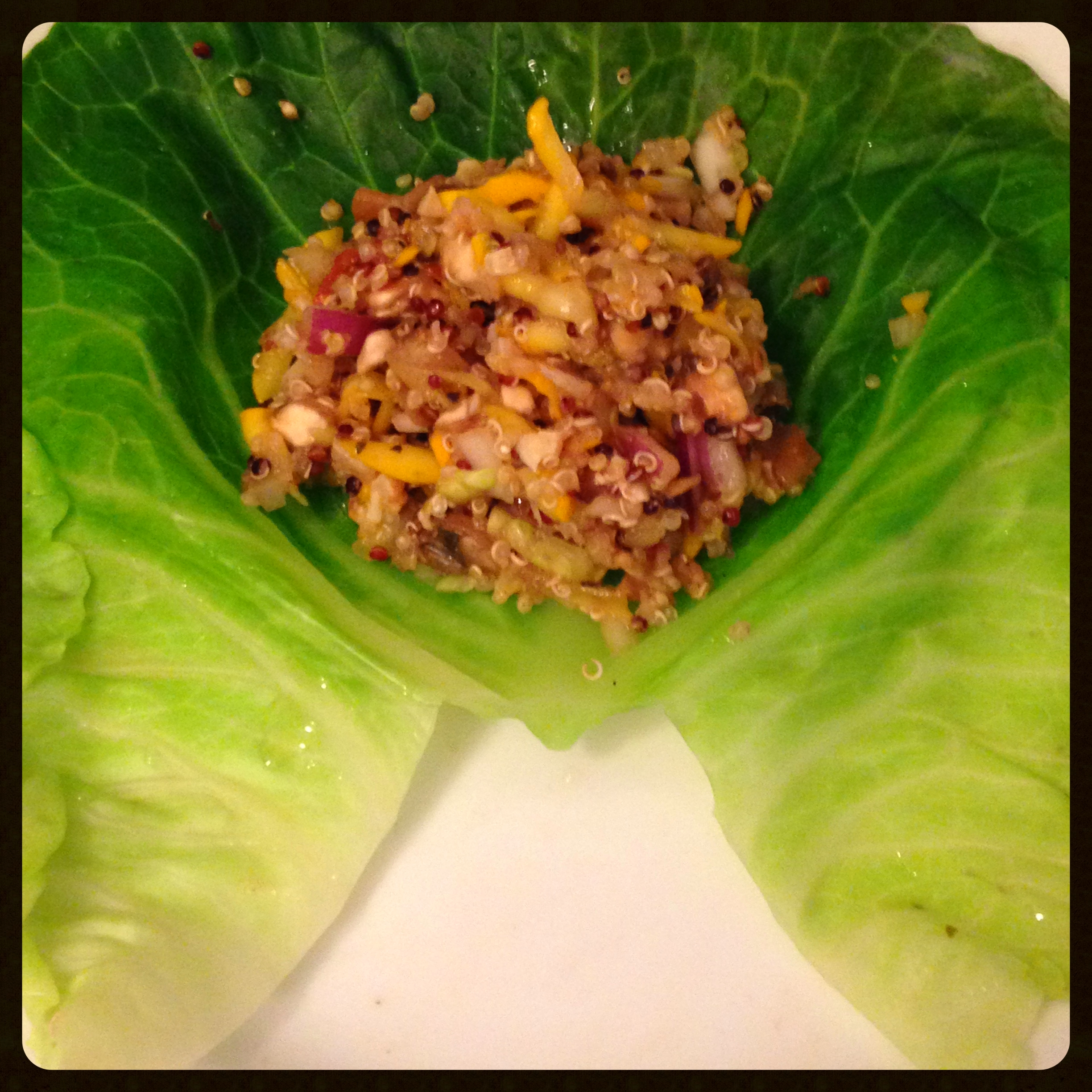 cabbage leaf with filling