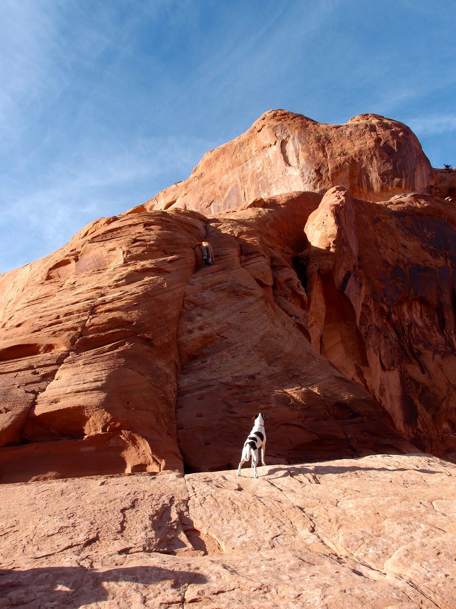 Scrambling up the sandstone ramp   to reach the top of Corona Arch as Soleille the dog looks on. Photo by Mandi Prout