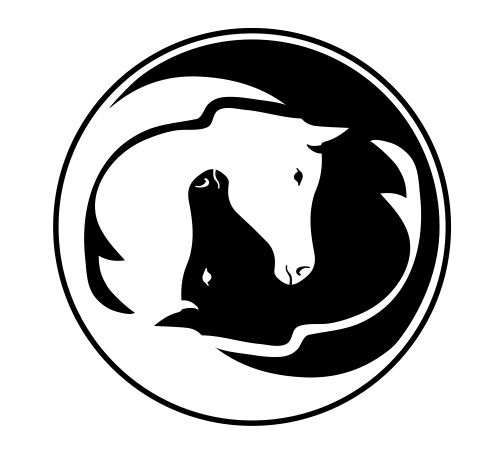 Balanced Horse Veterinary Service, PLLC