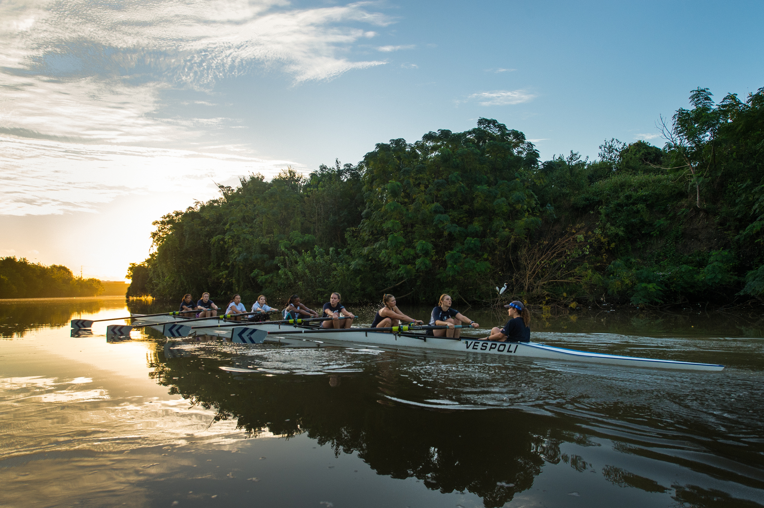 Home of Rice University's Rowing Team   define your college experience   join us