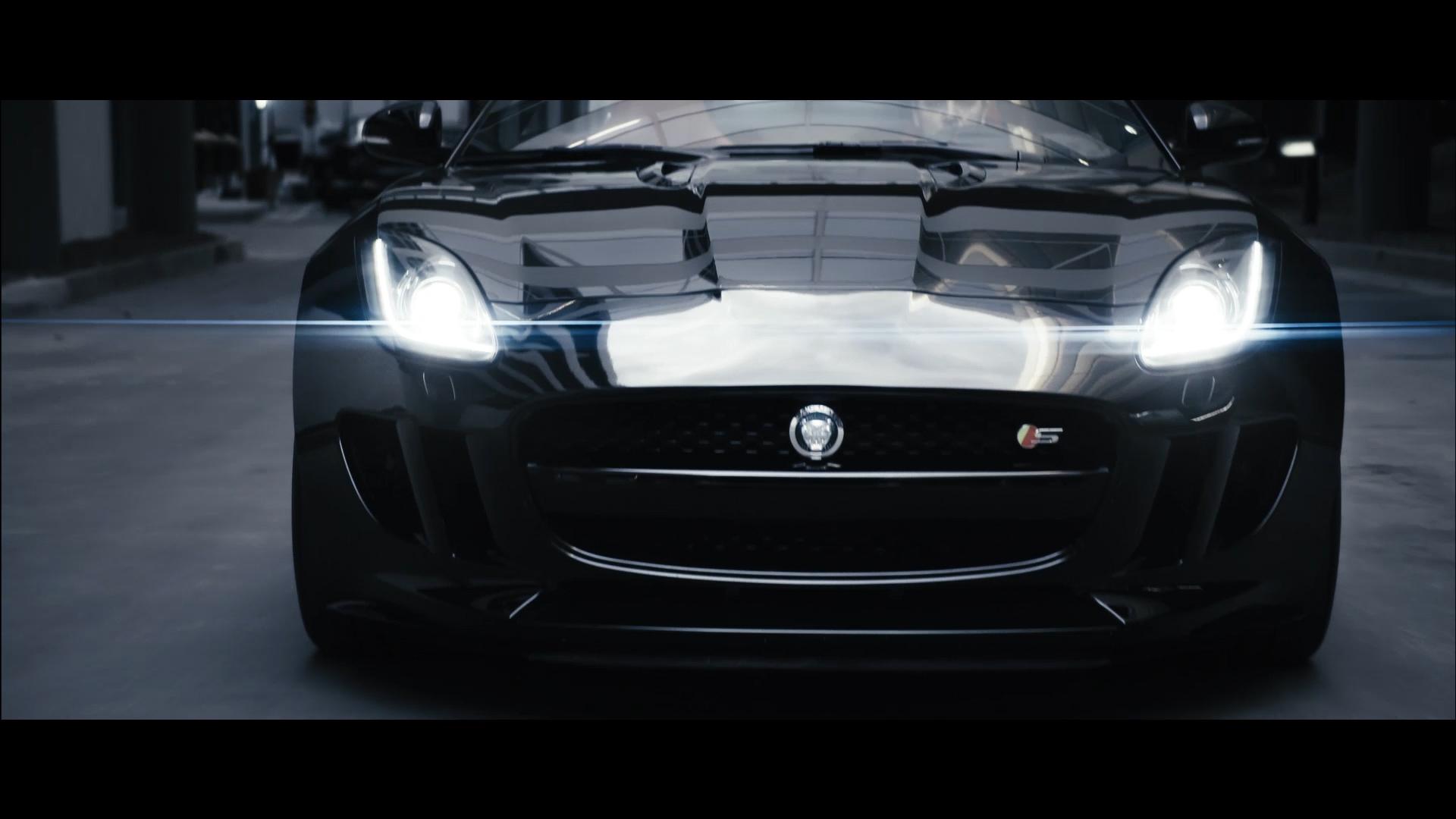 Jaguar_8.jpg