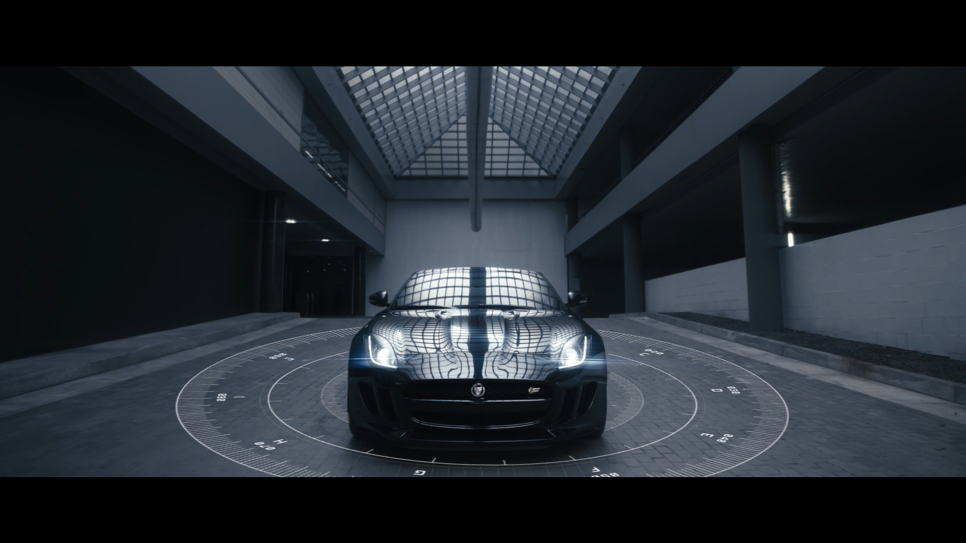 Jaguar_1.jpg