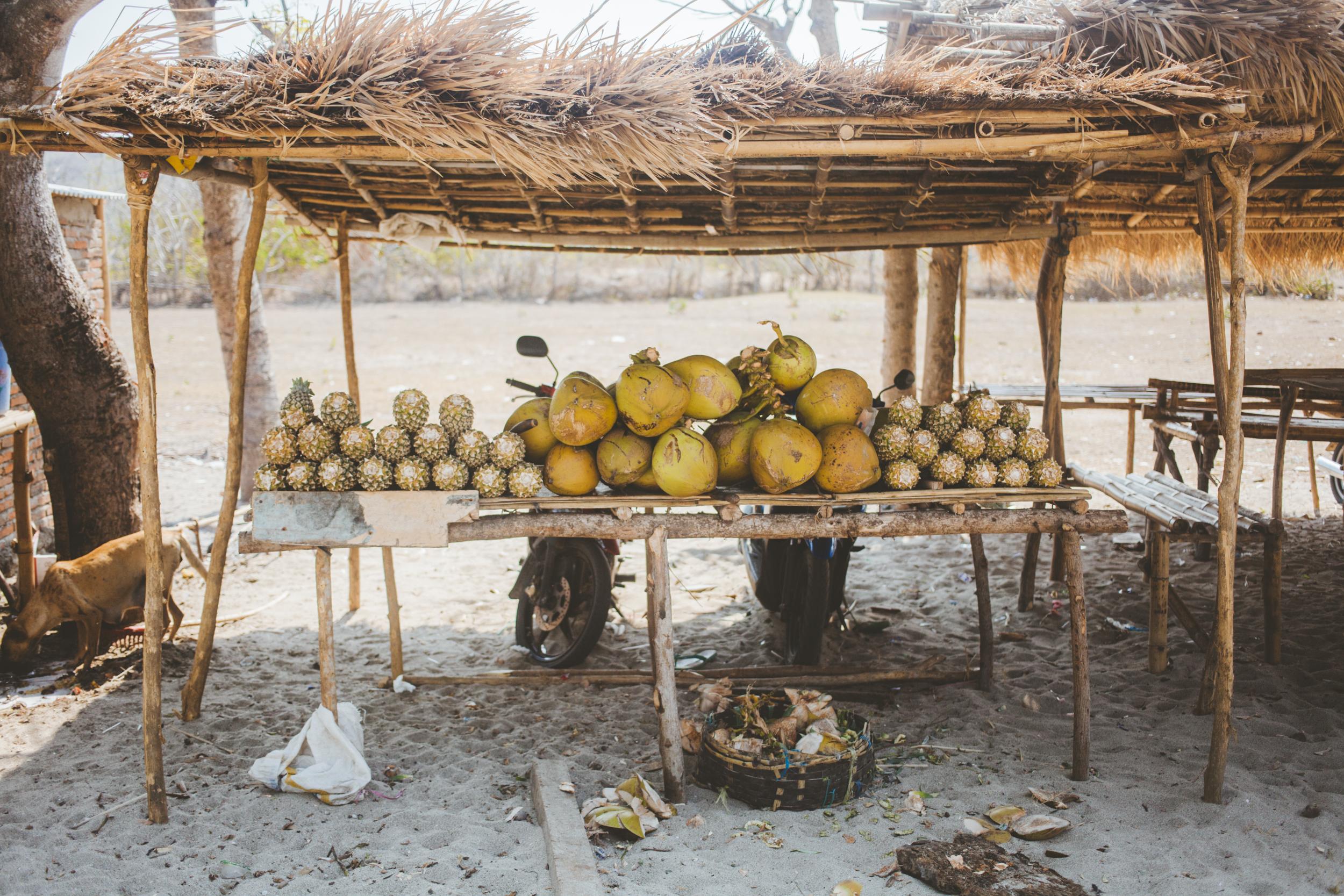 Lombok-MARIANNA JAMADI-8.jpg