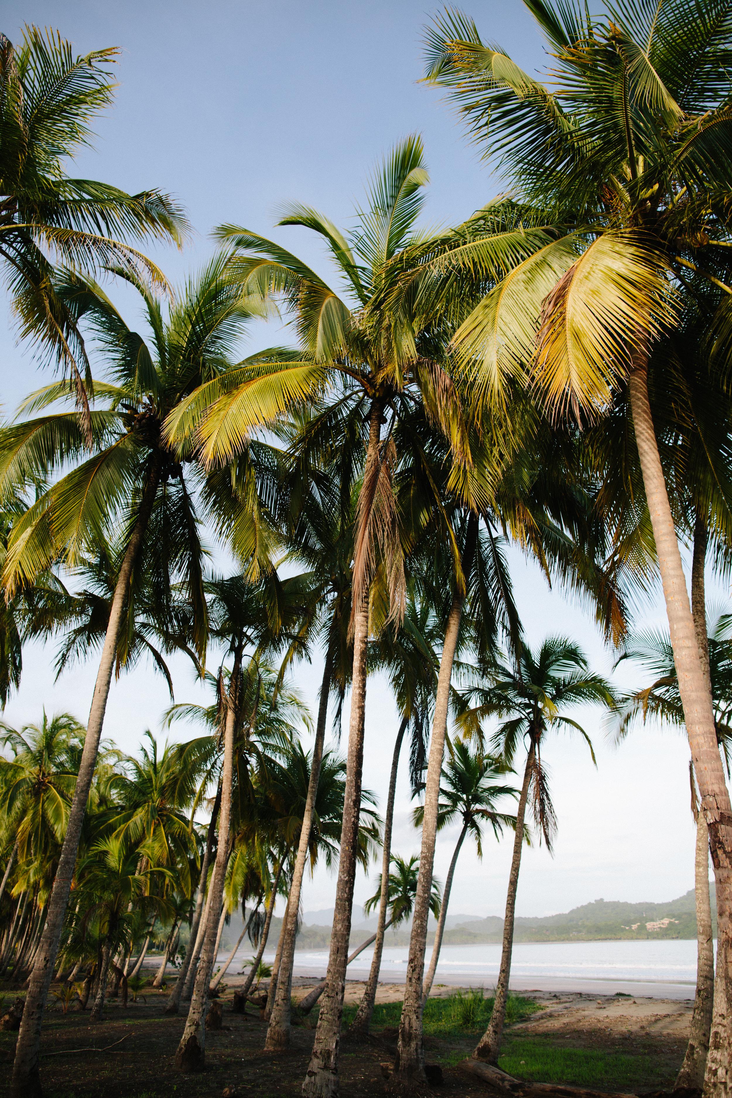 Costa Rica_REI_TAQ-158.jpg