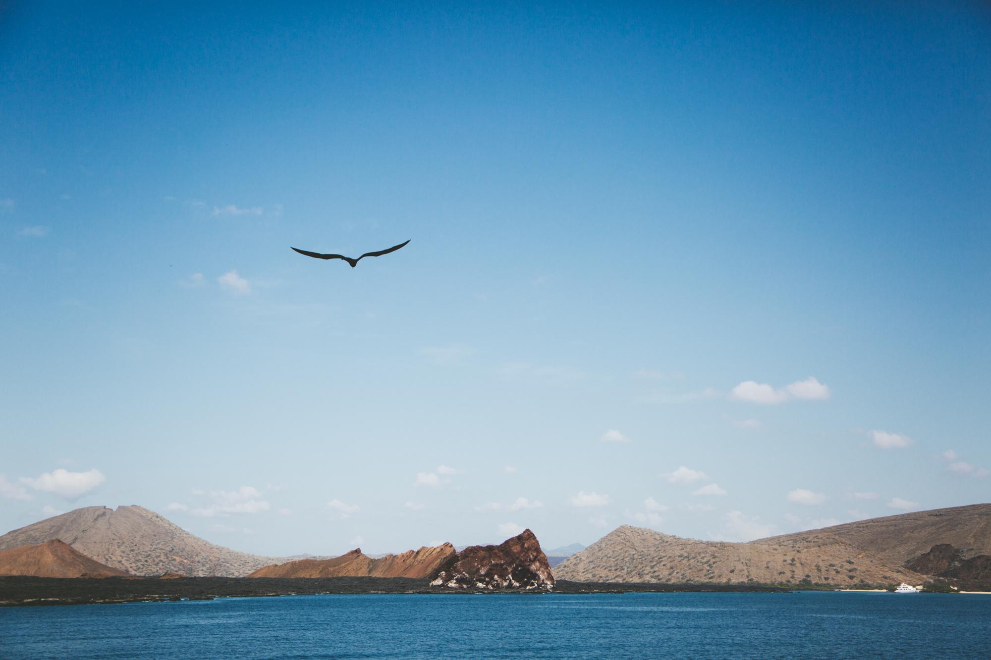 Galapagos-8.jpg